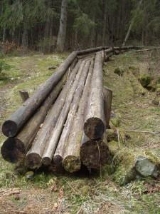 Рызы - желобы для спуска древесины